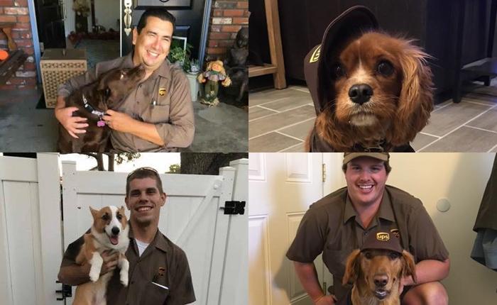 เพจ UPS DOGS ถ่ายทอดความสัมพันธ์น่ารัก ระหว่างพนักงานกับน้องหมา แก้ Pain Point ให้แบรนด์ได้
