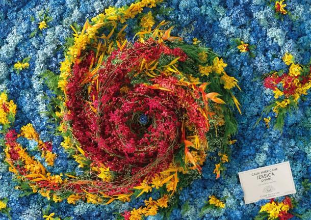 close-to-nature-flowers-hurricane-jessica-2000-92919