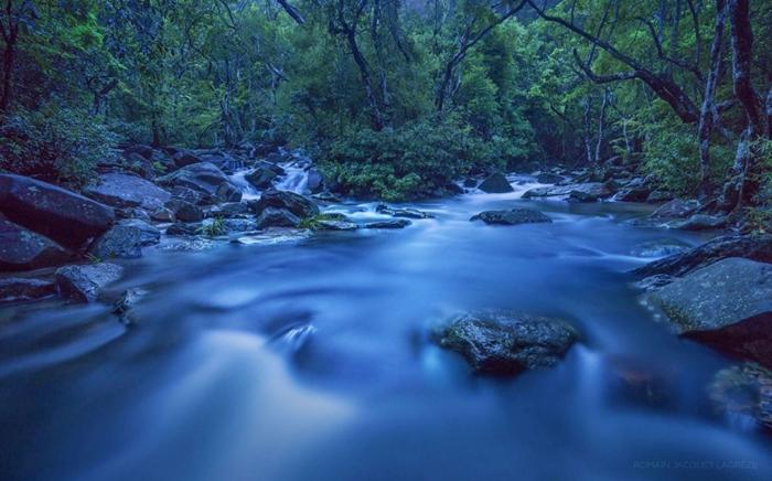 media_Plover Cove Country Park(Credit-Romain Jacquet Lagreze)