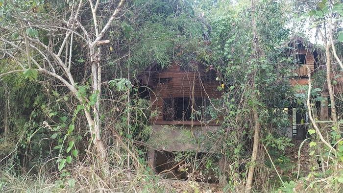 PantipPick-7 เมื่อผมบังเอิญไปซื้อบ้านผีสิง ริมแม่น้ำมาเรโนเวท