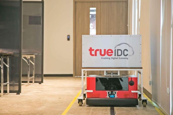 True IDC-04