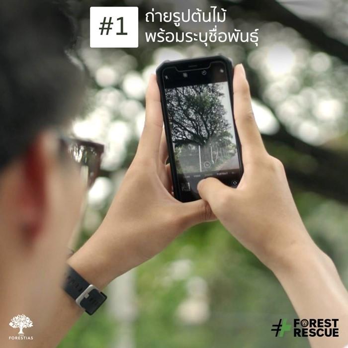 ForestRescue_3