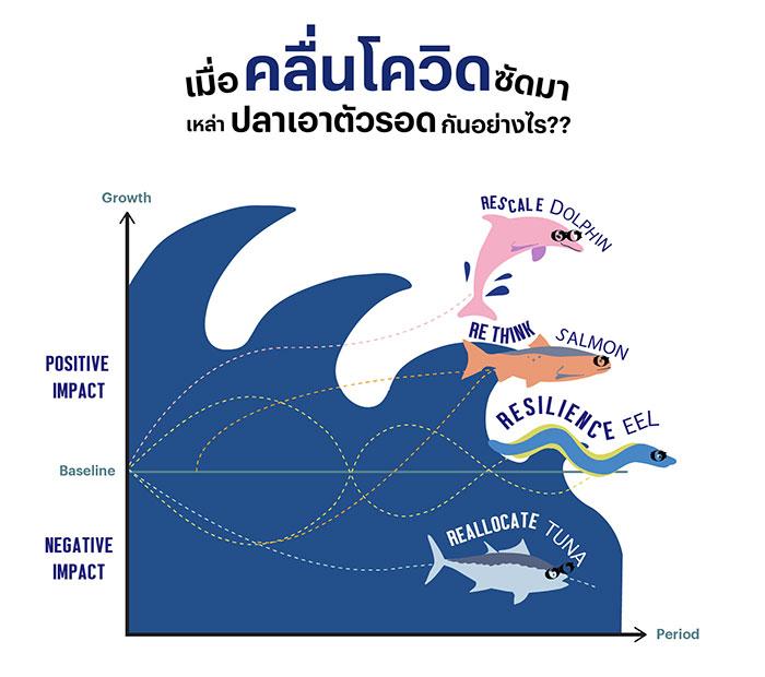 ว่ายฝ่าวิกฤติ: เมื่อคลื่นยักษ์ถาโถม เหล่าปลาในมหาสมุทรเอาตัวรอดกันอย่างไร